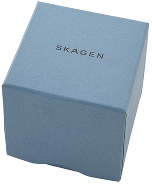 Часы SKAGEN SKW2705